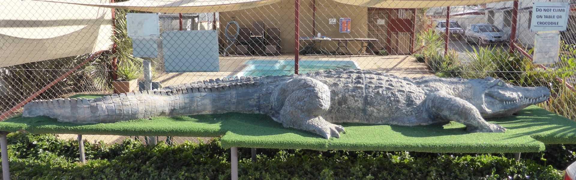 Kui Parks, Crocodile Caravan Park, Lightning Ridge, The Crocodile