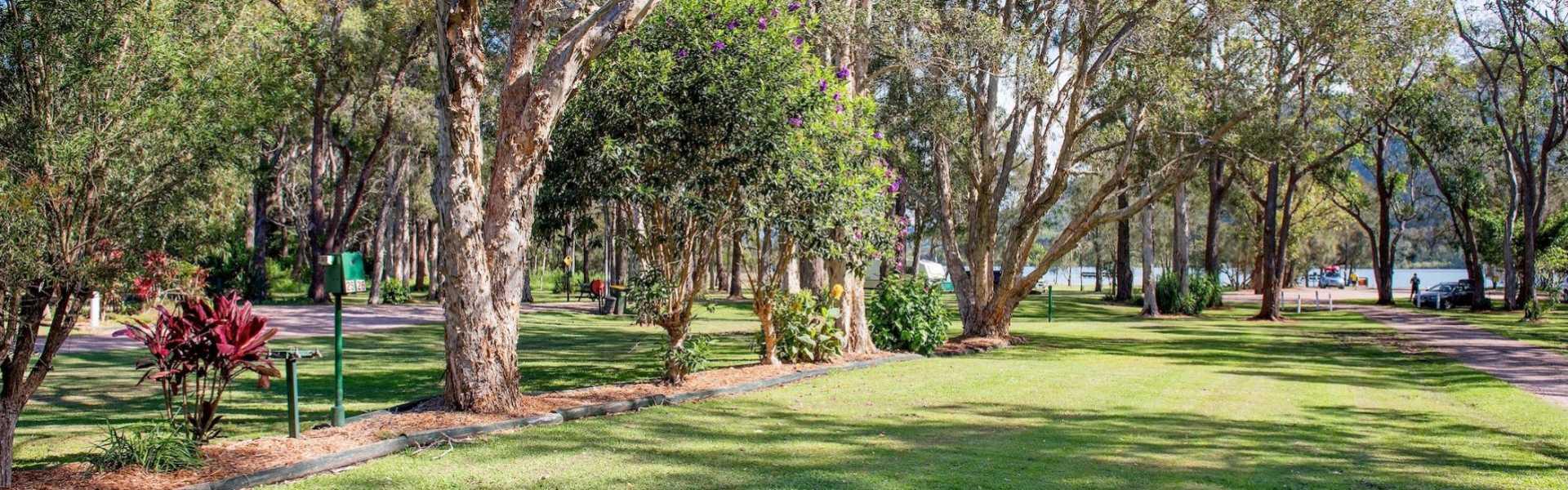 Kui Parks, Diamond Waters Caravan Park, Dunbogan, Park