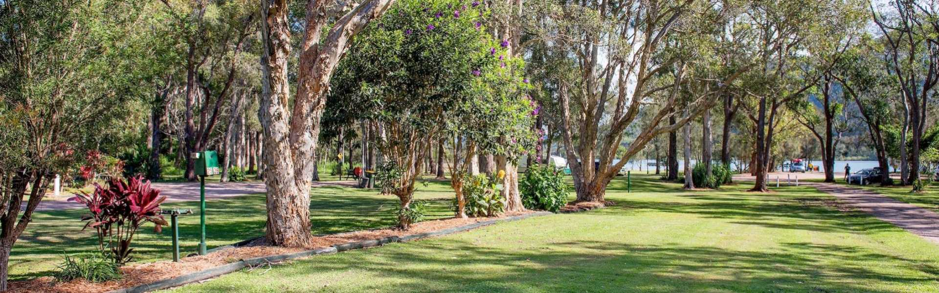 Kui Parks, Diamond Waters Caravan Park, Dunbogan, Park