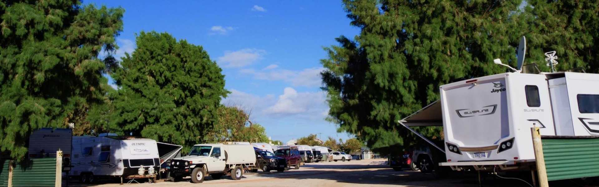 Kui Parks, Shark Bay Caravan Park, Denham, Sites
