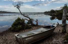 Kui Parks, Merimbula Lake Holiday Park, Pambula, Lake