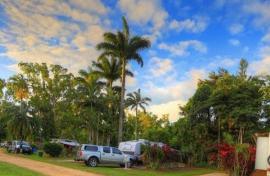 Kui Parks, Tropical Hibiscus Caravan Park, Mission Beach, Sites