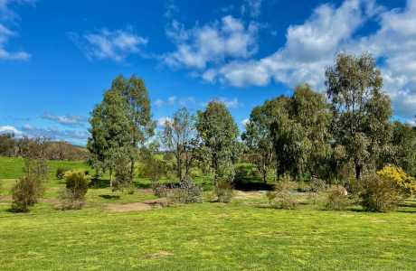 Kui Parks, Coolac Cabins & Camping Park