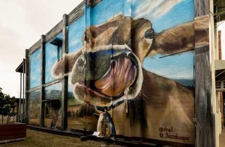 Kui Parks, Monto Caravan Park, Monto Newton Street Art Mural