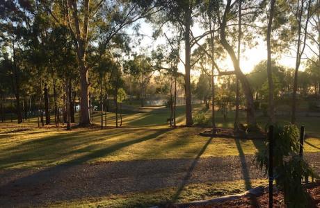 Kui Parks, Barambah Bush Caravan and Camping Park, Murgon, Sunrise