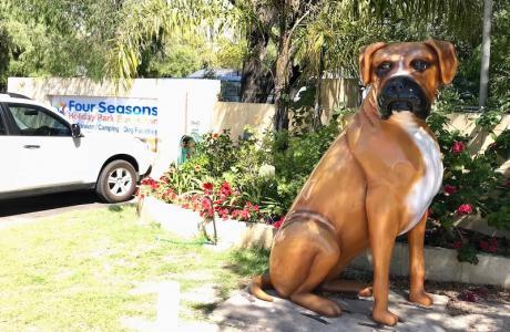 Kui Parks, Four Seasons Holiday Park, Busselton, Pet Friendly