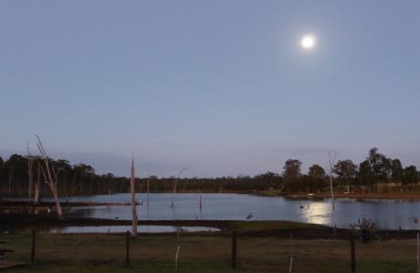 Kui Parks, Lake Redbrook Holiday Retreat, Childers, Lake