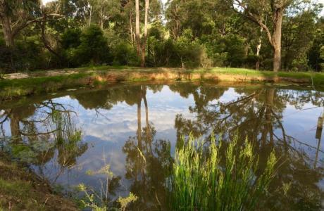 Kui Parks, Nicholson, Bushland Cabin & Caravan Park, Lake