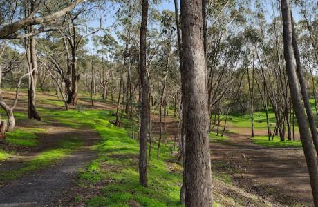 Kui Parks, Maldon Caravan Park, Unpowered Sites