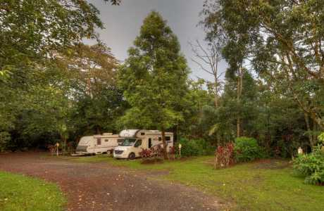 Kui Parks, Millaa Millaa Tourist Park, Sites