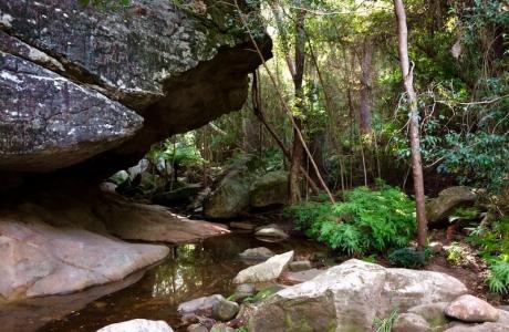 Kui Parks, Monto Caravan Park, Cania Gorge