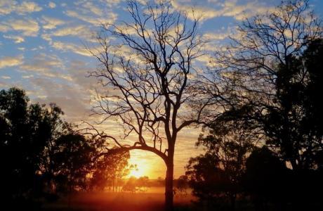 Kui Parks, Monto Caravan Park, Sunset