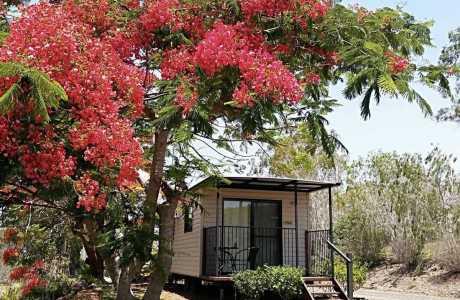 Kui Parks, Mount Larcom Tourist Park, Cabin