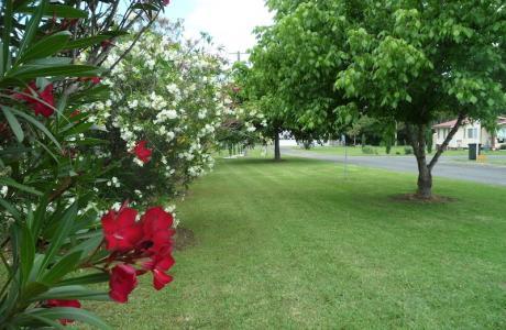 Kui Parks, Murrurundi Caravan Park, Gardens