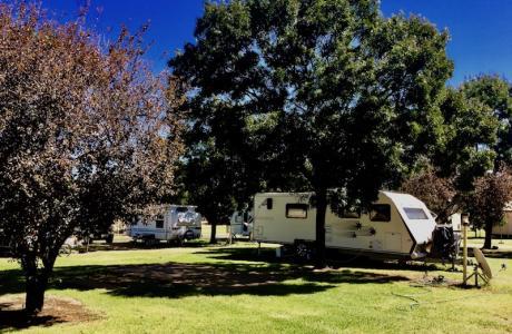 Kui Parks, Red Cliffs Caravan Park, Mildura, Sites