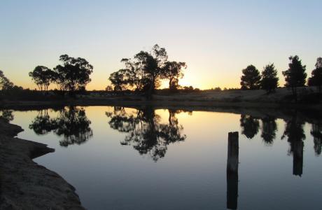 Kui Parks, Tingha Gems Caravan Park, Tingha, Lake