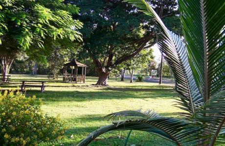 Kui Parks, Trinity Plains Tourist Park, Mareeba