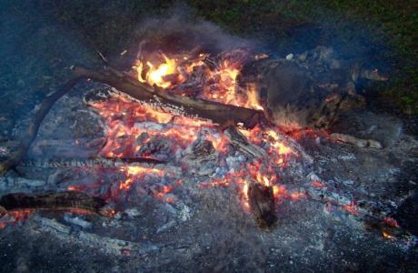 Kui Parks, Trinity Plains Tourist Park, Mareeba, Camp Fire