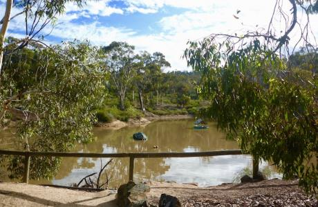 Kui Parks, Toodyay Holiday Park & Chalets, Dam